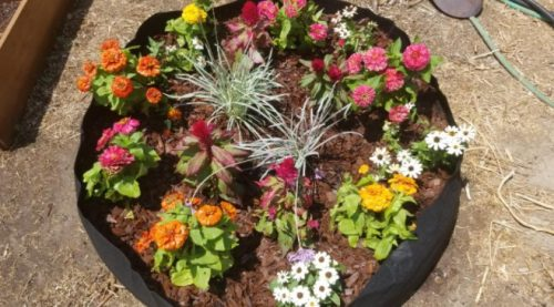 Garden Raised Planting Bed - todaywillow photo review